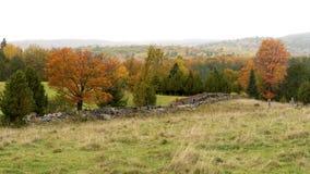 De herfst in de Provincie van Renfrew, Ontario Stock Foto's
