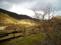 De herfst in Racha Stock Foto's