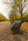 De herfst in Regentenpark Royalty-vrije Stock Afbeeldingen