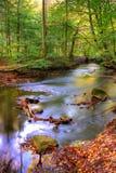 De herfst - rivier en bos royalty-vrije stock afbeeldingen