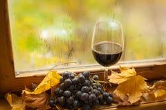 De herfst rode wijn Royalty-vrije Stock Afbeelding
