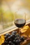 De herfst rode wijn Royalty-vrije Stock Foto
