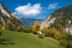 De herfst in Roemenië Royalty-vrije Stock Fotografie