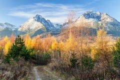 De herfst in rotsachtige bergen Hoge Tatras, Slowakije Royalty-vrije Stock Foto's