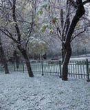 De herfst in Russisch park Royalty-vrije Stock Foto