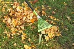 De herfst. Schoonmakende bladeren Royalty-vrije Stock Foto's