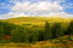 De herfst in Schotse Hooglanden Stock Foto