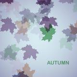 De herfst seizoengebonden achtergrond Stock Afbeeldingen