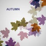 De herfst seizoengebonden achtergrond Royalty-vrije Stock Foto
