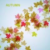 De herfst seizoengebonden achtergrond Royalty-vrije Stock Foto's