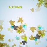 De herfst seizoengebonden achtergrond Stock Foto's
