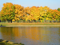 De herfst in stadspark stock fotografie