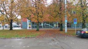 De herfst in Stuttgart Stock Foto