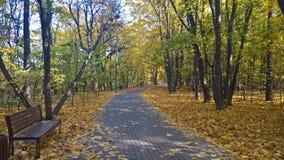 De herfst in Suvorov-Park van de stad van Moskou royalty-vrije stock foto's