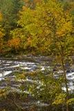 De herfst, Tellico Rivier, Cherokee N-F Stock Afbeelding