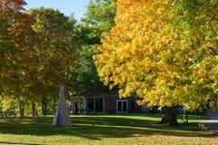 De herfst in västergötland, Zweden Stock Afbeelding