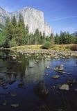 De herfst in Vallei Yosemite Stock Afbeeldingen