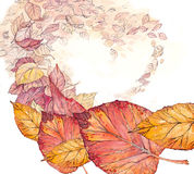 De herfst van bladeren, het hart Stock Fotografie