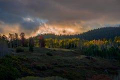De Herfst van Colorado royalty-vrije stock afbeelding