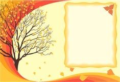 De herfst van het seizoen Stock Fotografie