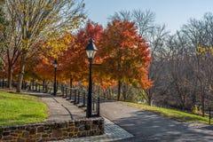 De Herfst van het Smithvilledorp Stock Foto