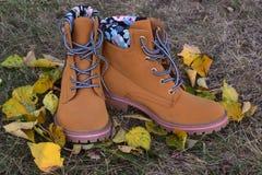 De herfst van schoenenvrouwen Royalty-vrije Stock Afbeelding