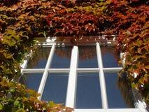 de herfst venster royalty-vrije stock afbeelding