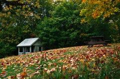 De herfst verlaat 2 Stock Afbeeldingen