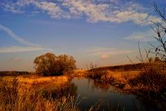 De herfst verlaat het vallen, zijn de kleuren verschillend, de rivier, weiden, blauwe hemel royalty-vrije stock foto's