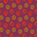 De herfst verlaat leuk patroon Royalty-vrije Stock Foto