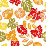 De herfst verlaat naadloos patroon Stock Afbeelding