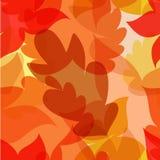 De herfst verlaat naadloos patroon Vector illustratie Stock Fotografie