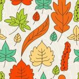 De herfst verlaat naadloos patroon Vector illustratie Stock Foto