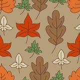 De herfst verlaat naadloos patroon Vector illustratie Royalty-vrije Stock Afbeelding