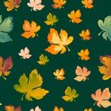 De herfst verlaat naadloos patroon, vectorachtergrond Rood, geel en groen esdoornblad, voor het ontwerp van behang, stof Stock Afbeelding