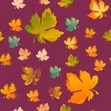 De herfst verlaat naadloos patroon, vectorachtergrond Rood, geel en groen esdoornblad, voor het ontwerp van behang, stof Stock Afbeeldingen