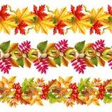 De herfst verlaat naadloze grens vector illustratie
