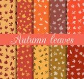 De herfst verlaat naadloze patroonreeks Voor behang, bedlinnen, tegels, stoffen, achtergronden Stock Fotografie