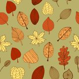 De herfst verlaat patroon, kleurrijke gevallen bladeren, handrawn illustratie Stock Fotografie