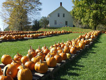 De herfst in Vermont Royalty-vrije Stock Fotografie