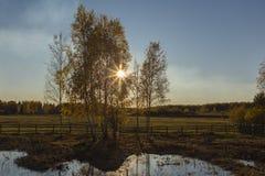 De herfst is verschillend Royalty-vrije Stock Afbeelding