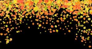 De herfst vliegende bladeren stock foto's