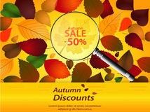 De herfst voorziet landschap Stock Foto