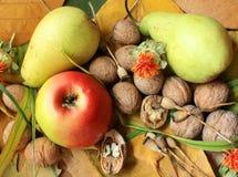 de herfst vruchten en noten Royalty-vrije Stock Foto
