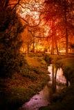 De herfst in Walsall 4 stock afbeelding