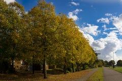 De herfst, weg in de stad bij zonnige dag Gangstreek Royalty-vrije Stock Foto