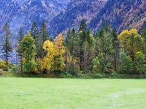 De herfst weidt en landbouwbedrijven in de vallei van meer Klontalersee of in de Klontal-vallei royalty-vrije stock fotografie