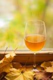 De herfst witte wijn Royalty-vrije Stock Fotografie