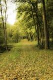 De herfst in Ypres Royalty-vrije Stock Afbeeldingen