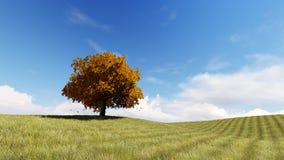 De herfst zingt 3D boom teruggeeft Royalty-vrije Stock Afbeeldingen